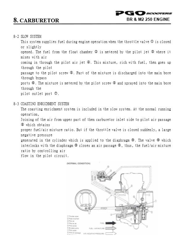 PGO 250 (ricoD) - Page 2 Carbpg12