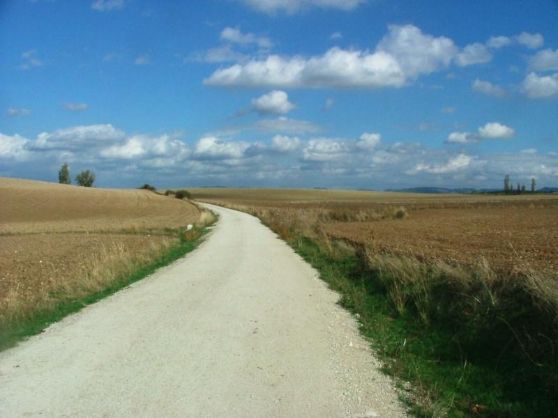 Photos du Camino de Santiago Dscf0010