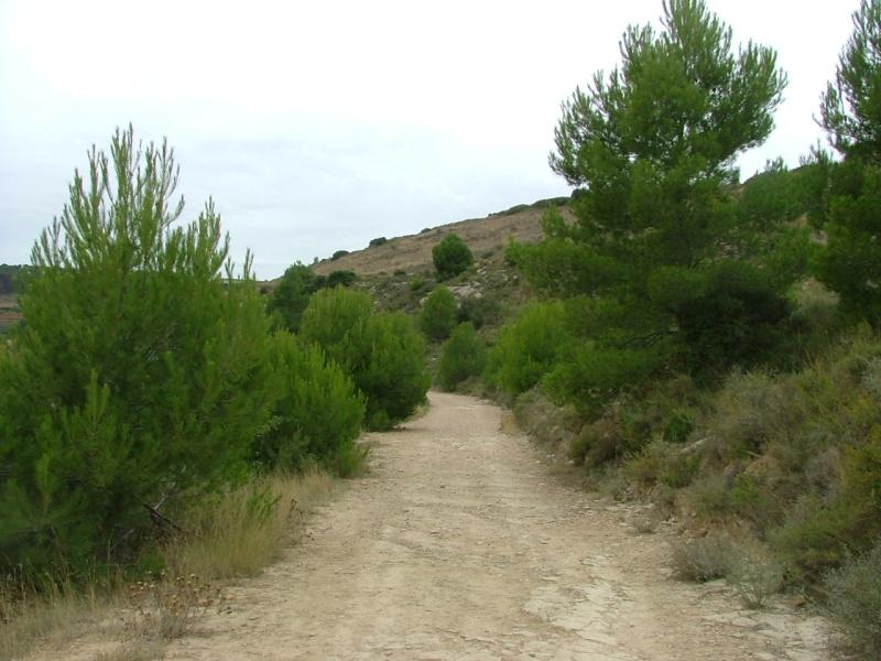 Photos du Camino de Santiago Dscf0110