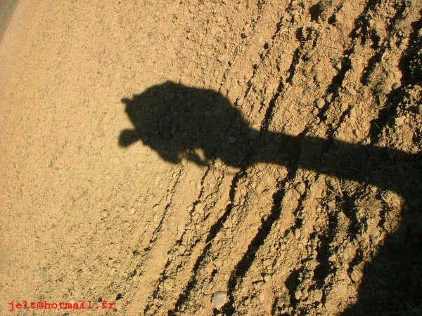 Photos du Camino de Santiago X1pjzf10