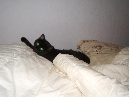 Mila, noire, 4 ans Mila_215