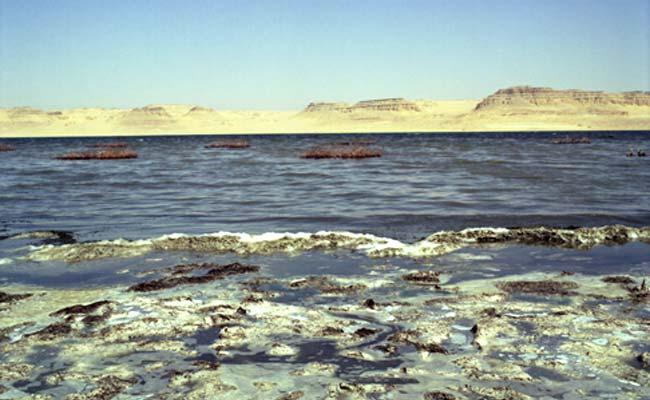 Saline, Lac Qarun, Oasis de Faiyum, Egypte [trouvé par FREEZ - Page 2 Egypte10