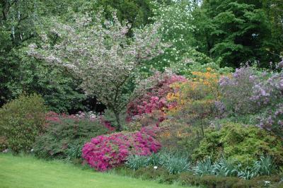Les jardins à la française Jardin13