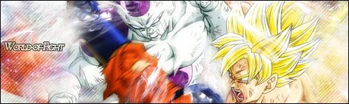 World-of-Fight