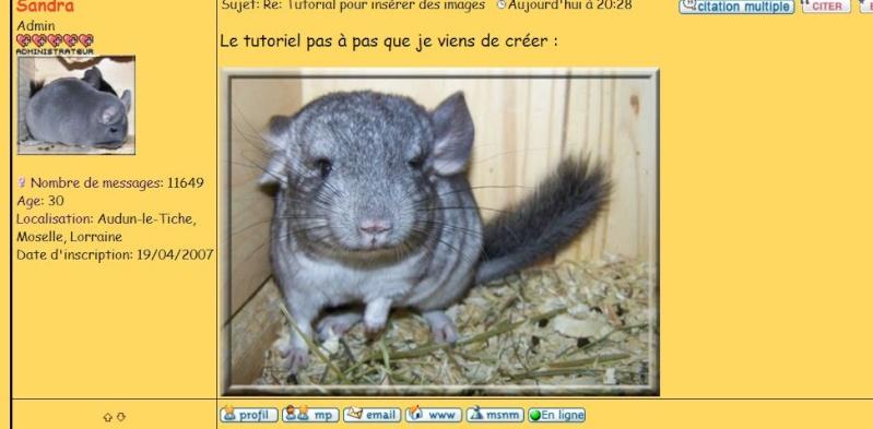Tutorial pour insérer des images (en images!) Casima16