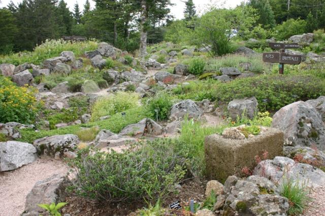 Une grande rocaille Scene_15