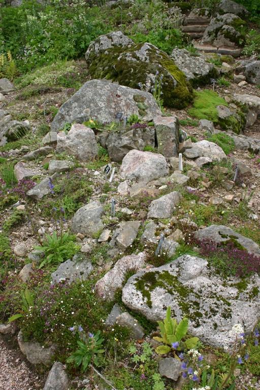 Une grande rocaille Scene_16