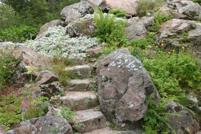 Une grande rocaille Scene_29