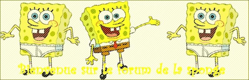 Le forum de la Sponge Team