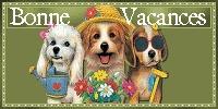 On part en vacances !! Bonnes10