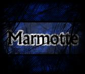 unemarmottecool
