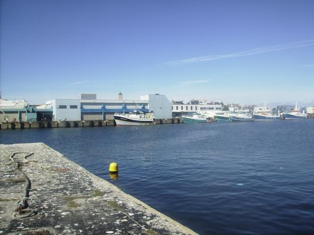 [Activité des ports] Le Guilvinec Imgp4312