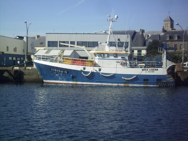 [Activité des ports] Le Guilvinec Imgp4314