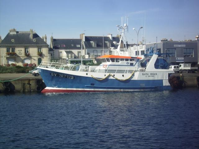 [Activité des ports] Le Guilvinec Imgp4315
