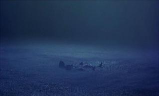 The Bourne quadrilogy (2002~2016, Doug Liman/Paul Greengrass) Identi22