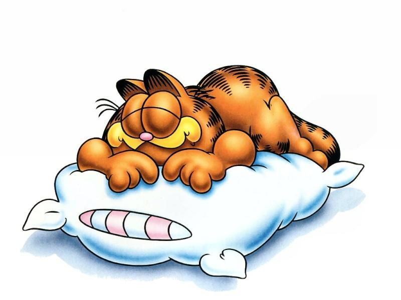 Garfield Garfie10