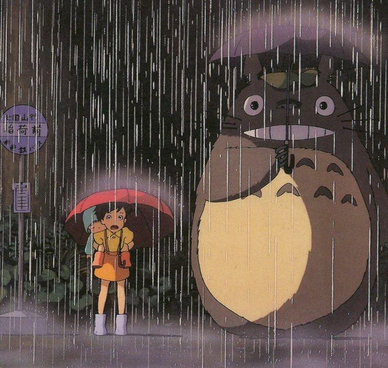 Totoro Film_310