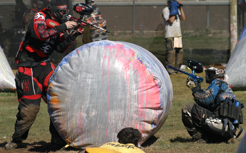 Forum de paintball speedball