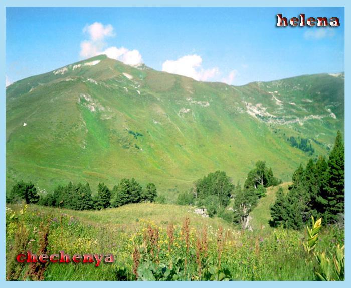 nature in chechenya 15255112
