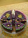 papillon Dsc00011