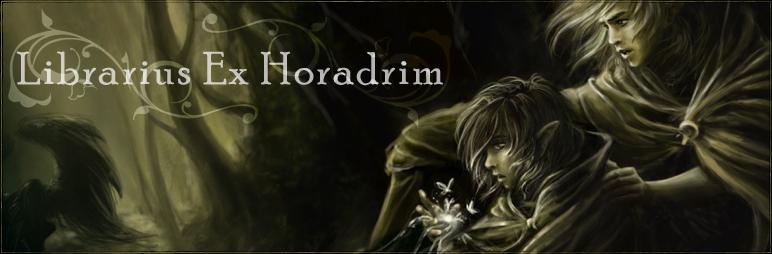 Librarius Ex Horadrim [CUBE]