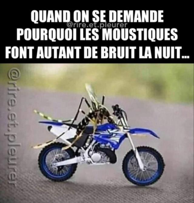 Humour en image du Forum Passion-Harley  ... - Page 6 65700310