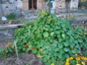 Le temps à Madelonnet du mois d'octobre 2007 2007_175