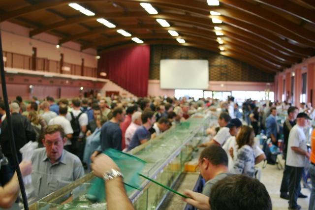 CONGRE/BOURSE Vichy 2011 Congre18