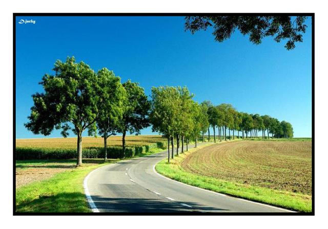 Des arbres à l' infini 63273411