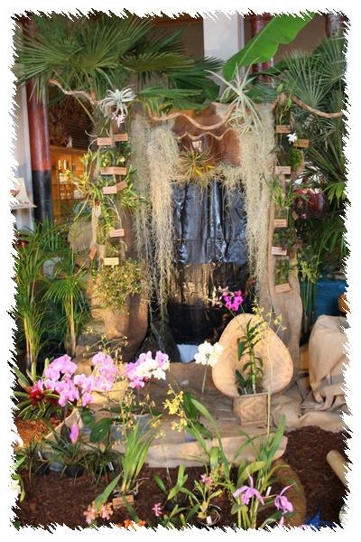 2ème salon international d'orchidées à Oudenaarde 510