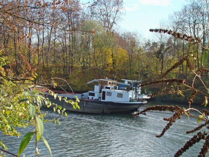 Promenades sur les berges de la Seine Croiss14