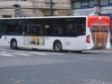 Bus pélliculés S8300010