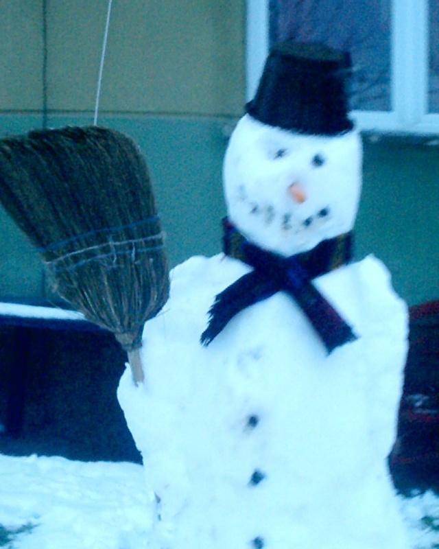 Zimske radosti S1010110