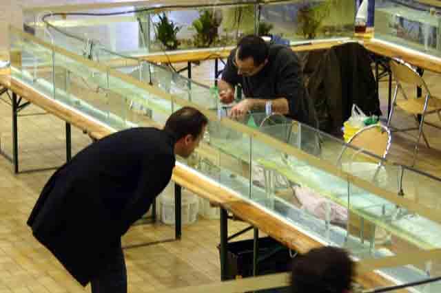 2007 Bourse12