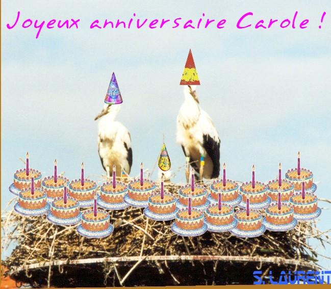 Pour Carole Cigogn12