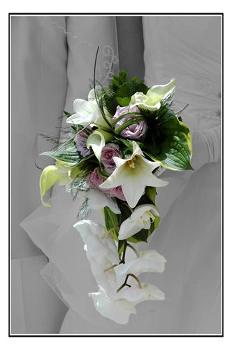 Les Fleurs... C_x-9010