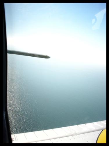Balade sur la baie du Mont St Michel Dsc06811