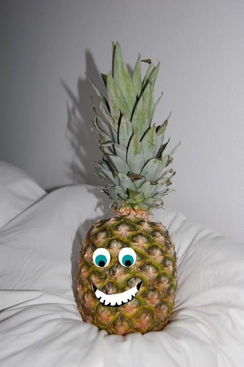 Pour la Team des oasis fruit band Ananas10