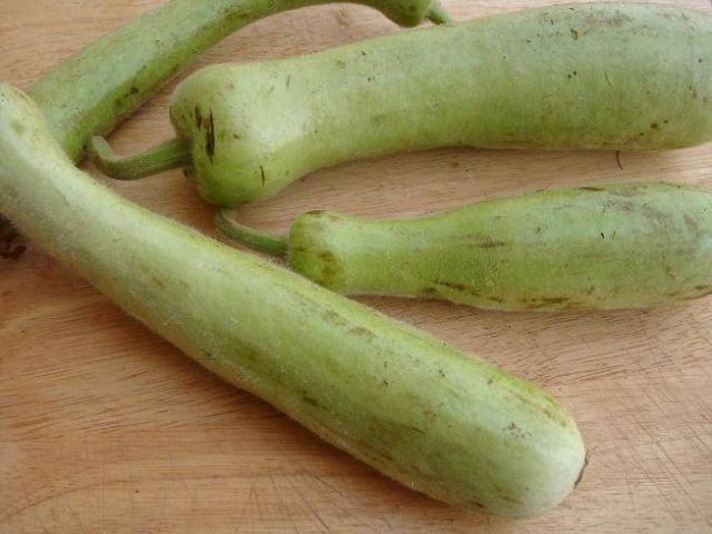 Plantes aromatiques, graines, noix, légumes, poissons, épices ... dans la Cuisine Marocaine Slaoui10