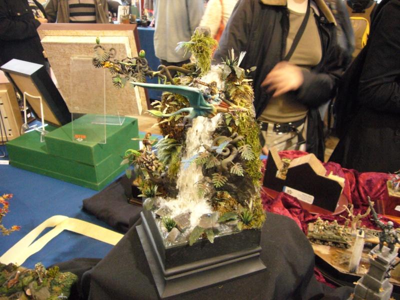 [Concours peinture]VIème Open de Bretagne 2011 Open_213