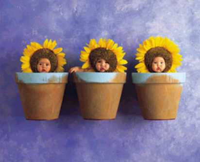 Le tiercé dans la famille Brunet: un garçon et 2 filles...! Triple10
