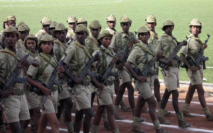 Camouflages du monde entier - Page 3 Eritre10