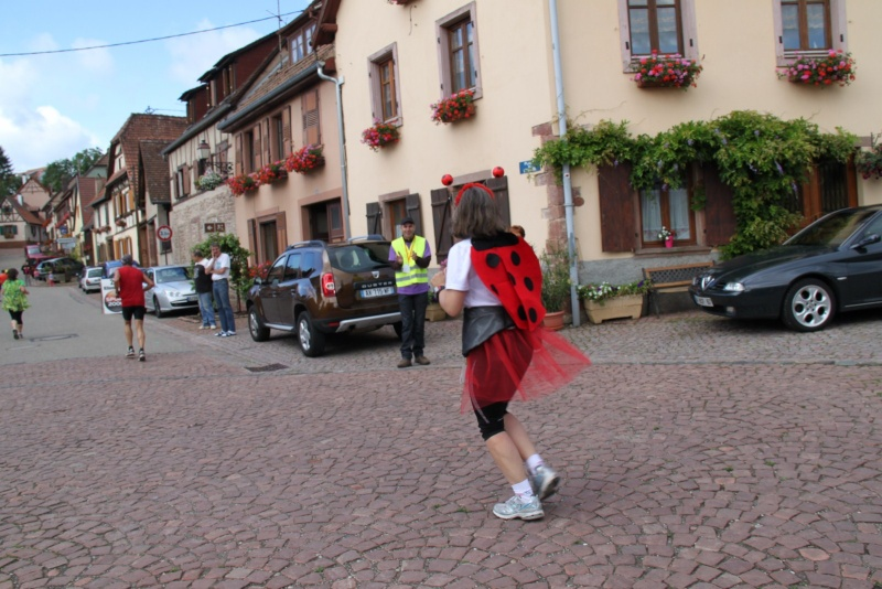 Le Marathon du Vignoble d'Alsace du 18 et 19 juin 2011:et c'est parti pour la 7ème édition qui passera bien entendu par Wangen! 47310