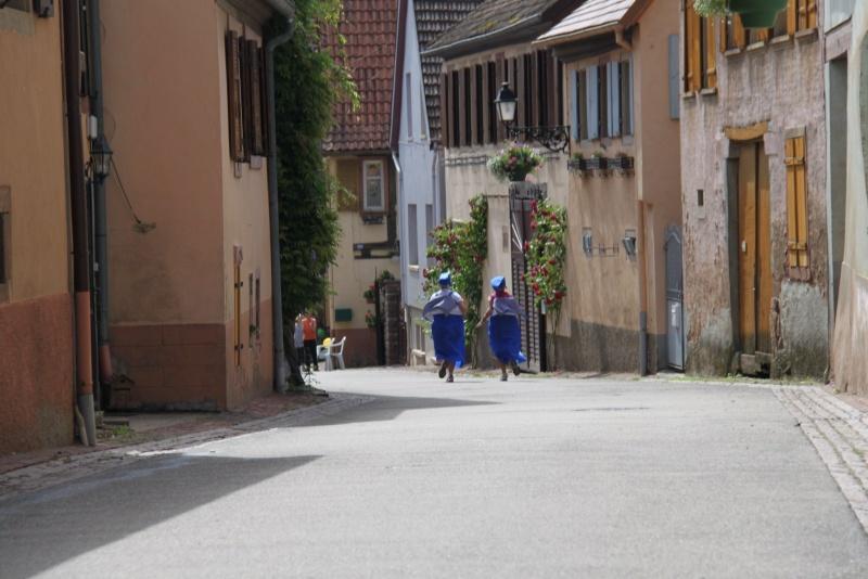 Le Marathon du Vignoble d'Alsace du 18 et 19 juin 2011:et c'est parti pour la 7ème édition qui passera bien entendu par Wangen! 47710