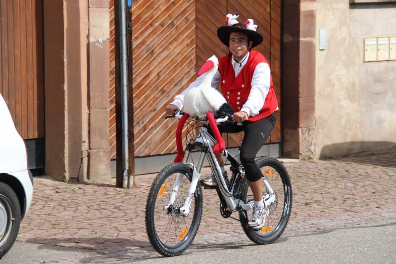 Le Marathon du Vignoble d'Alsace du 18 et 19 juin 2011:et c'est parti pour la 7ème édition qui passera bien entendu par Wangen! 48110
