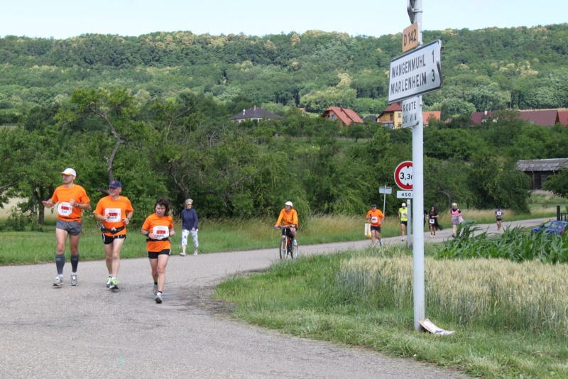 Le Marathon du Vignoble d'Alsace du 18 et 19 juin 2011:et c'est parti pour la 7ème édition qui passera bien entendu par Wangen! 54810
