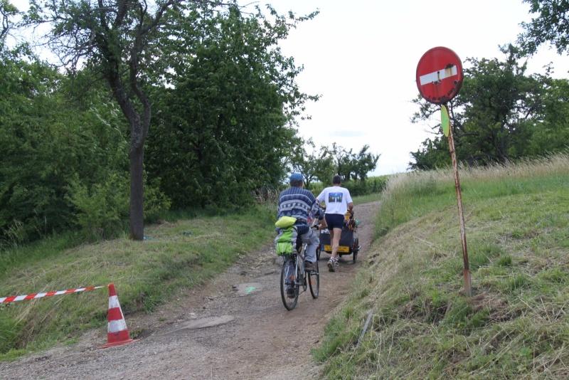 Le Marathon du Vignoble d'Alsace du 18 et 19 juin 2011:et c'est parti pour la 7ème édition qui passera bien entendu par Wangen! 55510