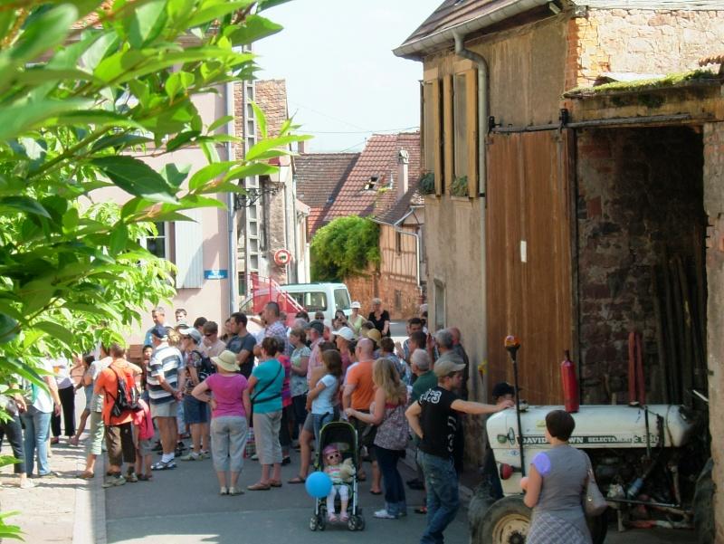Des Wangen à Wangen :une belle histoire belge.... Dscf6015
