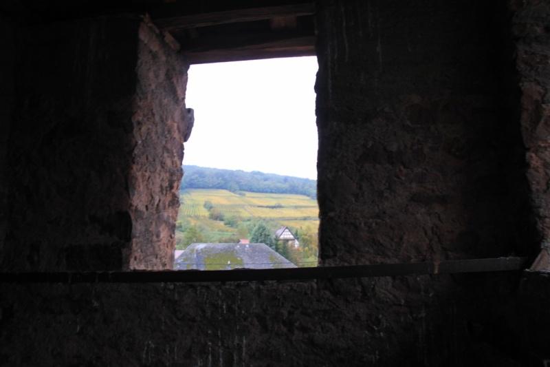 Du haut du Niedertor de Wangen Img_0229