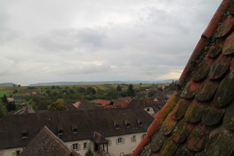 Du haut du Niedertor de Wangen Img_0234